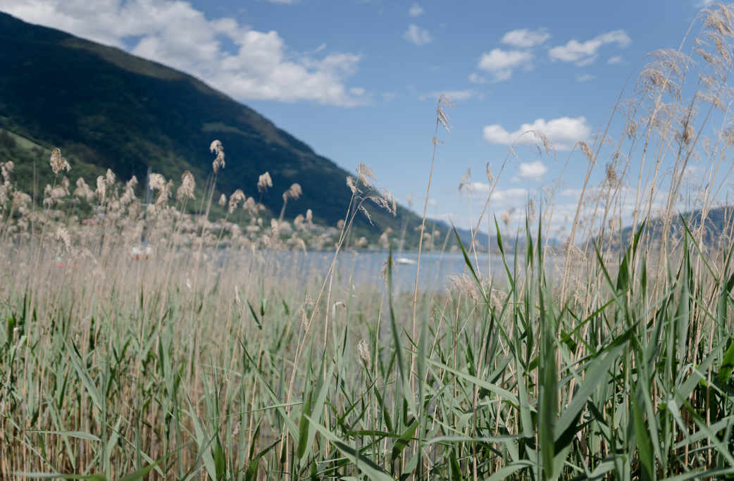 Ferien Unterkünfte am Ossiacher See bei Seebnb