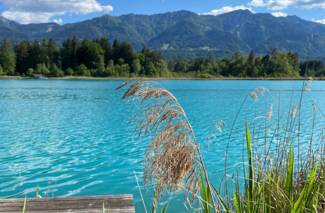 Ferien Unterkünfte am Faaker See bei Seebnb